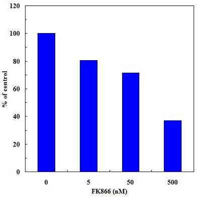 Effect of FK866 on NAMPT activity