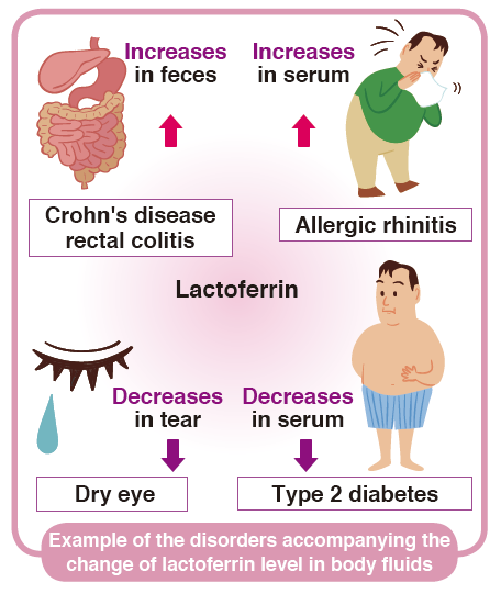 Disorders accompanying the change of lactoferrin level in the body fluids