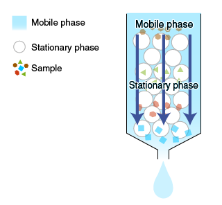 Mobile phase and stationary phase