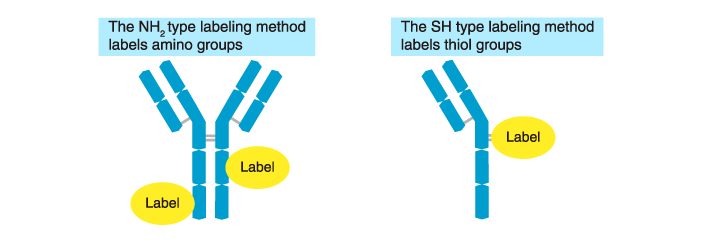Type of labeling